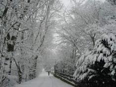 Niedere Tauern in Österreich