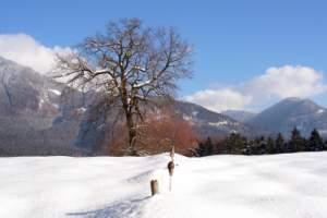 Wintersaison Ischgl für große und kleine Besucher